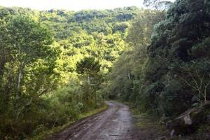 estrada_para_cachoeira_que_congela