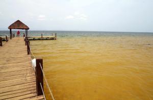 lago de palmas